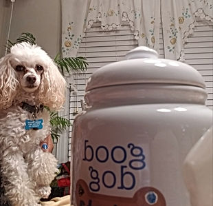 Dog Treat Jars Graphics .JPG
