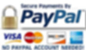 Secure Payments with PayPal No Account N
