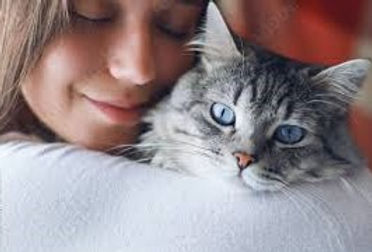 Pet Lover Gifts Page Graphics with a Cat.jpg
