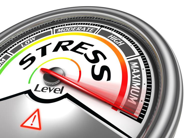 Stress et cerveau émotionnel