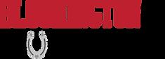 Bloomington_EquestrianTeam_Logo (003).pn