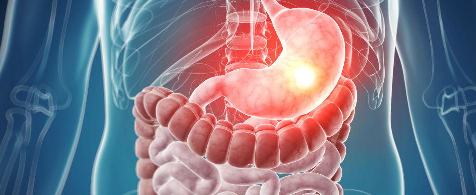 gastroenterologyresized
