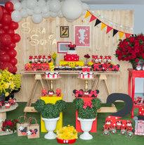 Minnie mouse decoracion