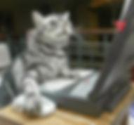 artcat.jpg