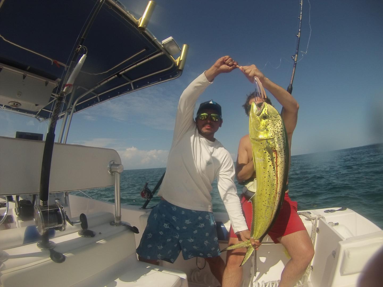 Panama mahi mahi fishing