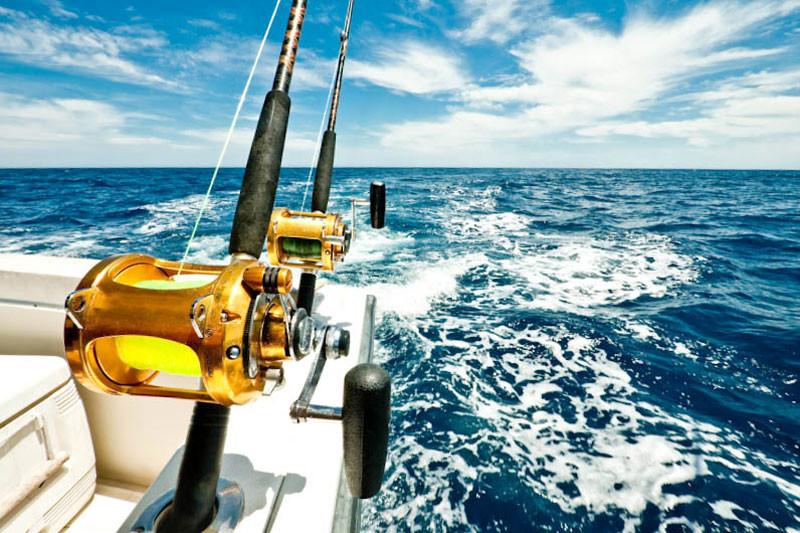 deep sea fishing in panama