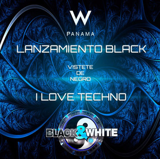 Black love Techno at W hotel, July 13