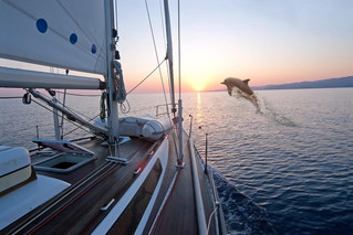 Reasons to Sail on Your Next Adventure