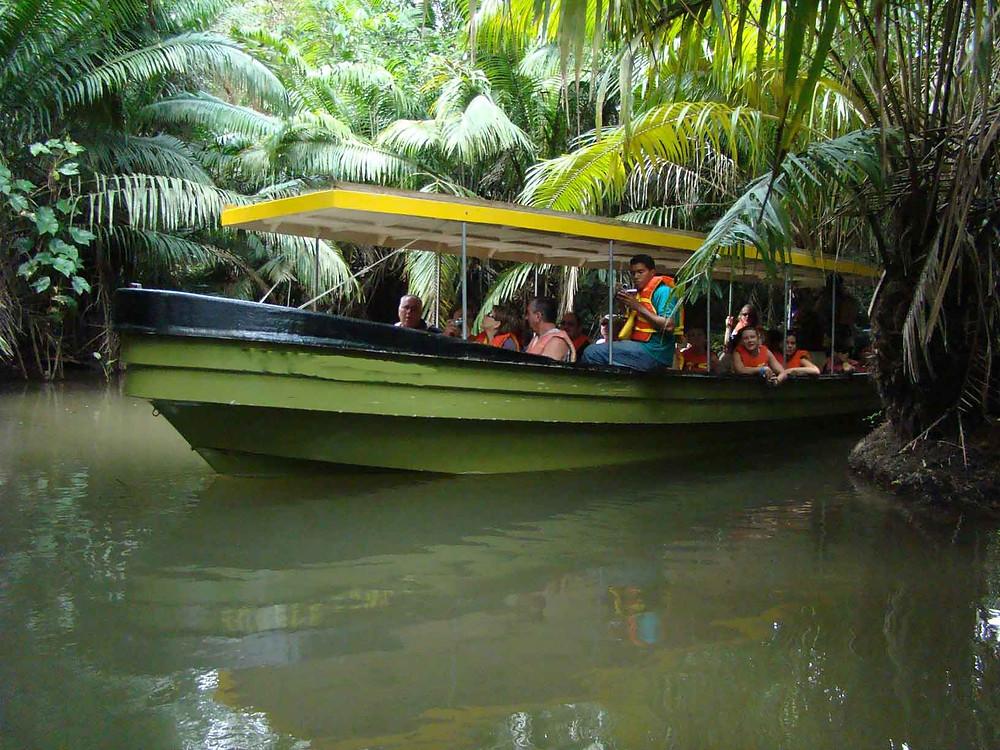 Monkey Island Jungle Safari