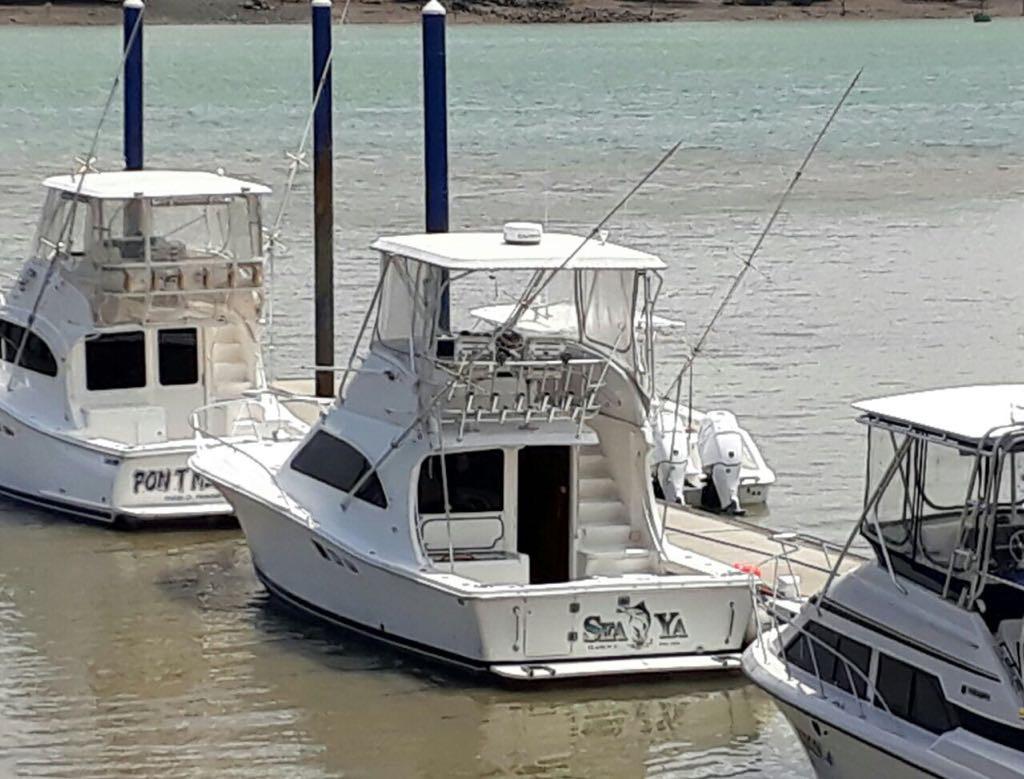 Panama charters