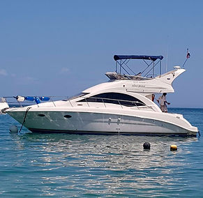 Sea Ray Rental Panama