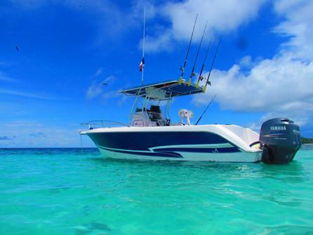 27ft proline fishing in panama