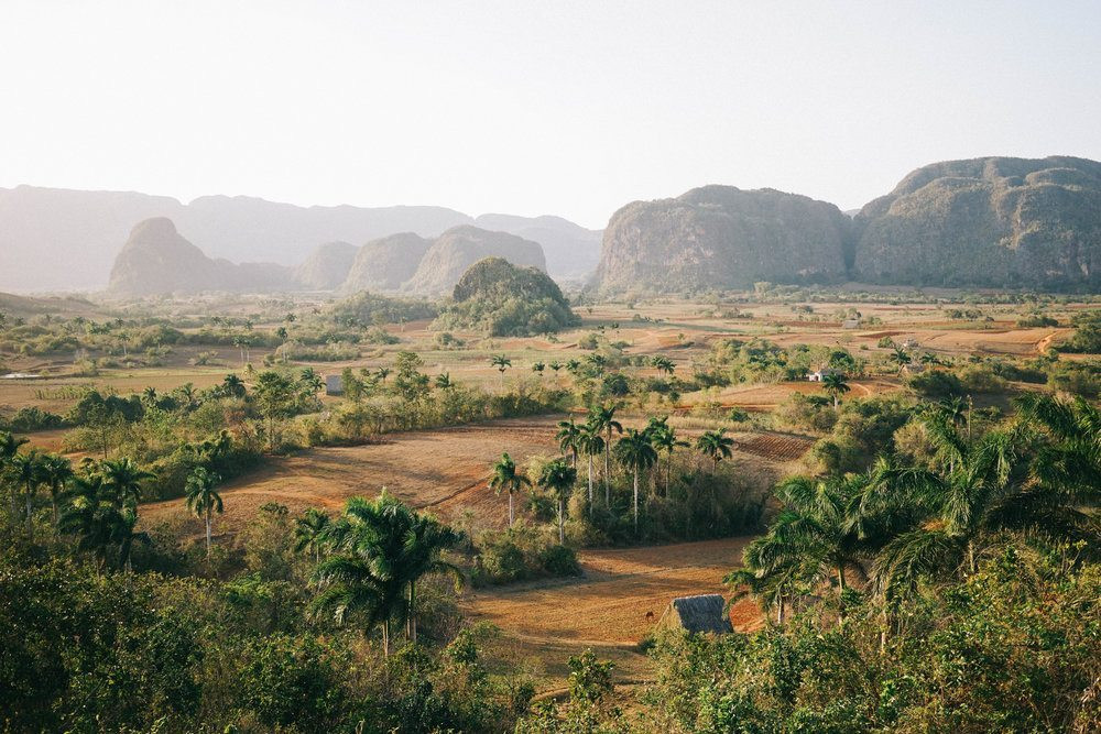 Cuba Cigar Plantation