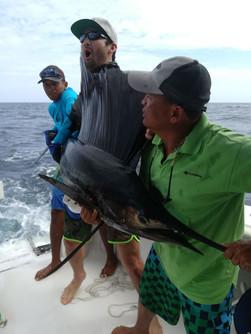 marlin sport fishing in panama