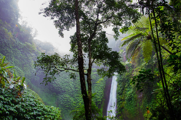 Panama Waterfall