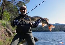 Ángel de Madrid-Fishing