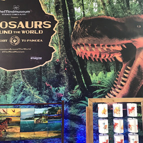 A Day with The Dinosaurs Around the World