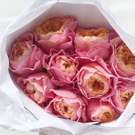 Exquisite roses; guaranteed to please ❤️