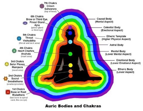 7 Chakras - What are the seven bodies? What is a body aura? Reiki Healing_Healing Tree Holistic Health_Charleston SC