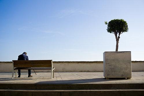 El hombre y el árbol