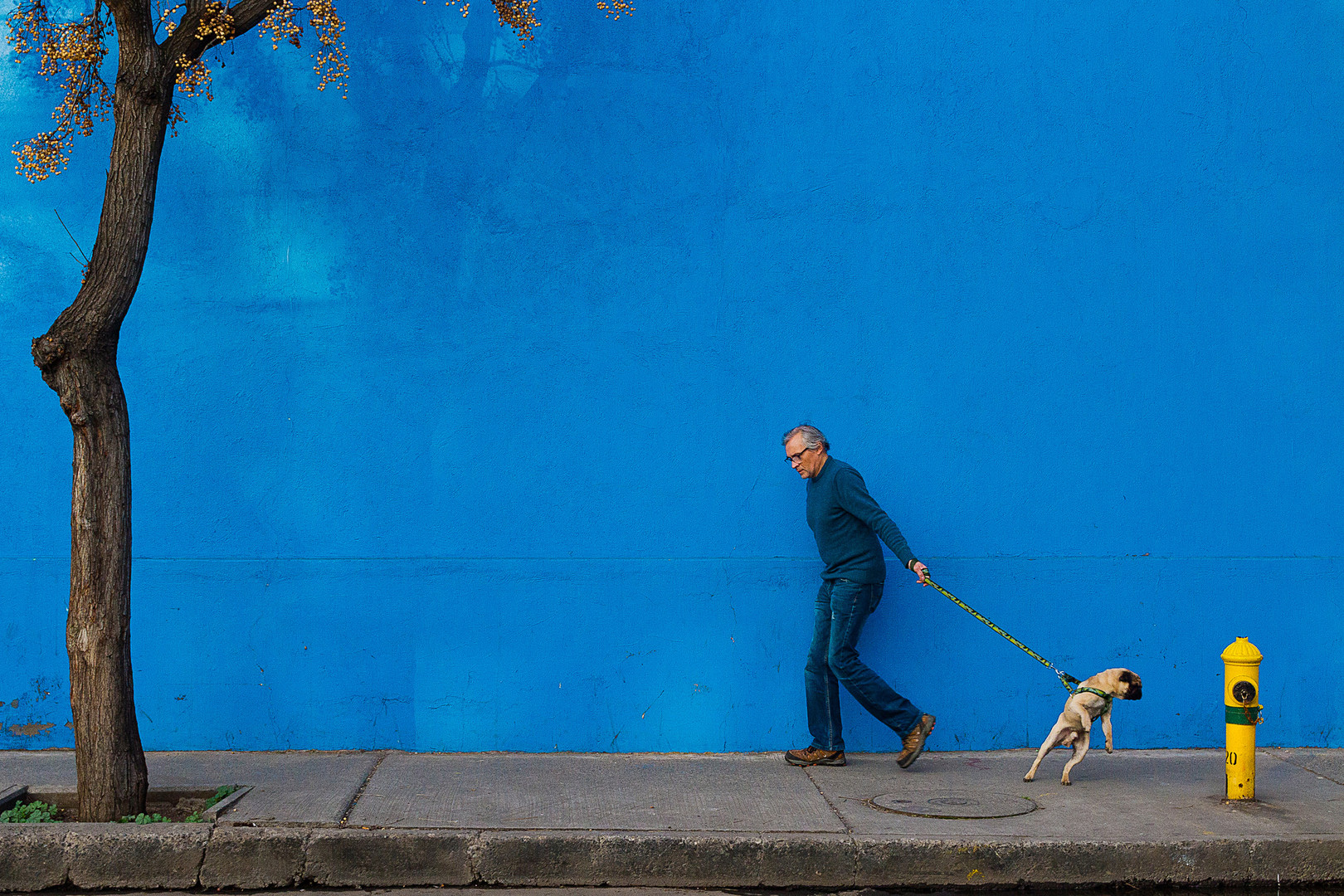 El hombre y su perro