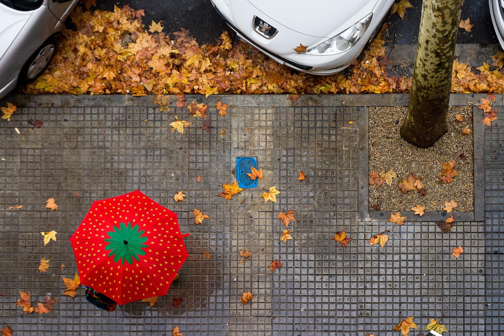 El paraguas de fresa