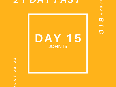 21 Day Fast::Day 15