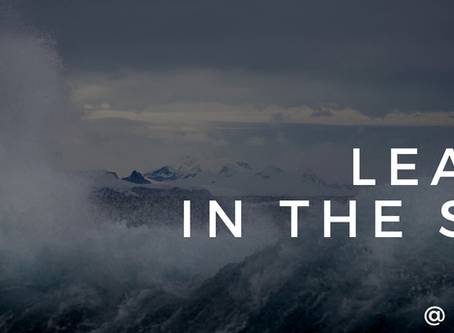 Leading in the Storm