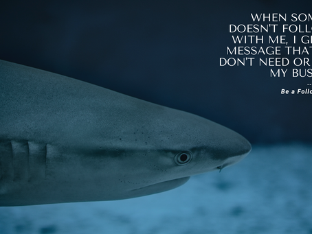 Be a Follow-Up Shark