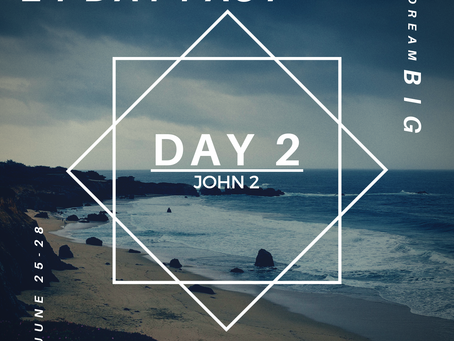 21 Day Fast::Day 2