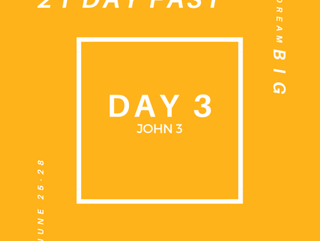 21 Day Fast::Day 3