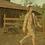 Thumbnail: Maine Hunting Lodge Blanket Shorts (M/L)