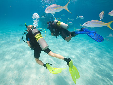 PADI-Enriched-Air-Nitrox-Diver-Specialty