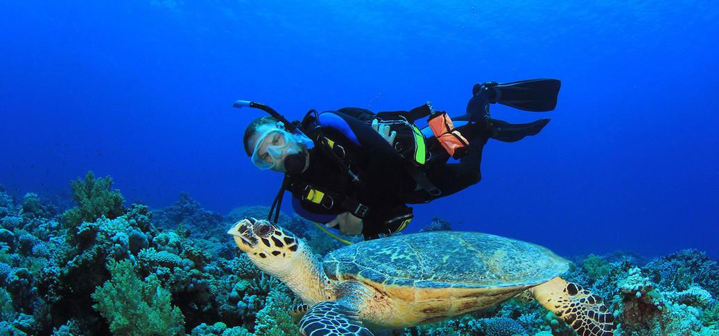 6-cozumel-h_underwater.jpg