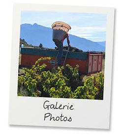Polaroid_GALERIE PHOTOS 2.jpg
