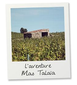 Polaroid_MAS TALAIA 2.jpg