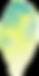 petale-02.png