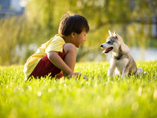 Why we love children and animals