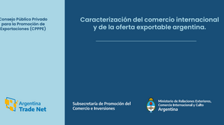 Informe final del CPPPE