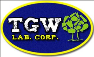 Representacion de GTW Labs