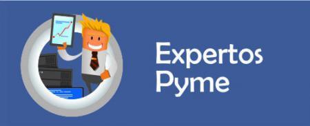 experto pyme