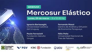 Mercosur Elástico