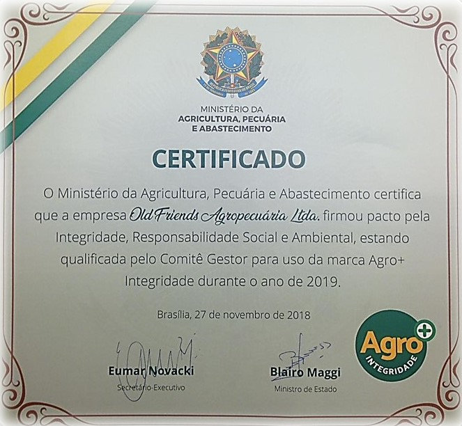 Certificado rev 06.jpg