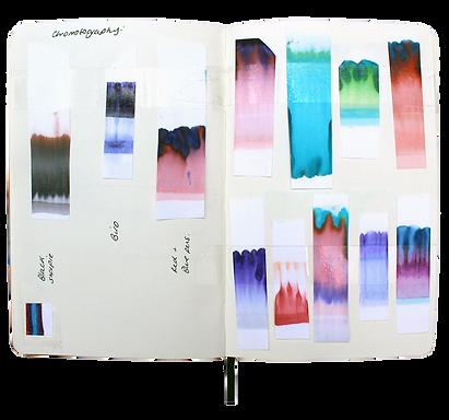 chromo book.png