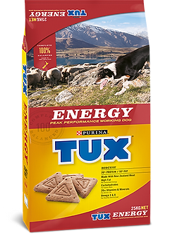 product-image-energy1.png