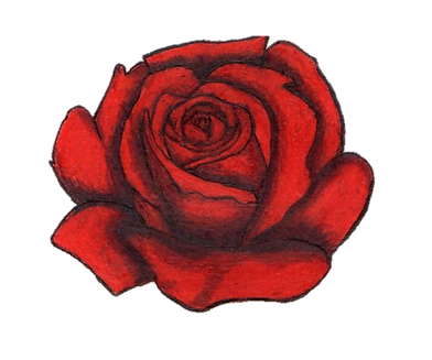 rose rouge dessin 2.png