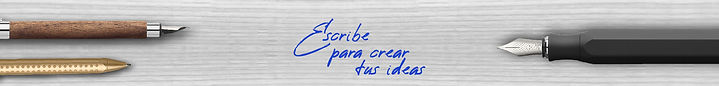 210215 20 y 21 de Febero_Banner corto EF