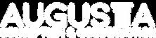 Logo blanc fond transparent.png