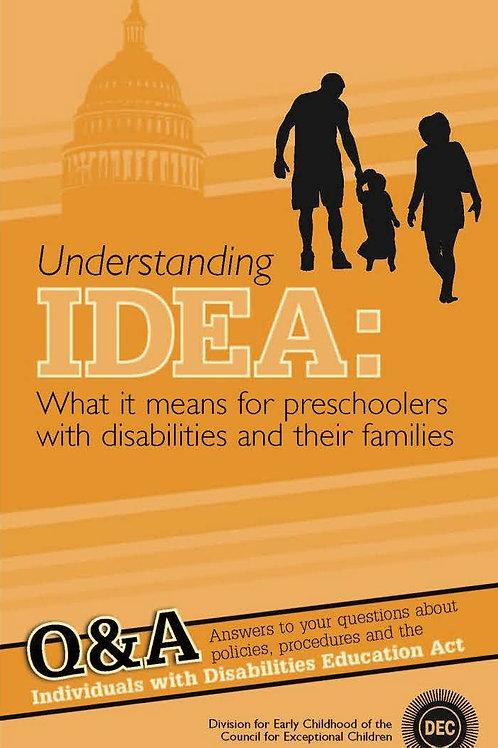 Understanding IDEA