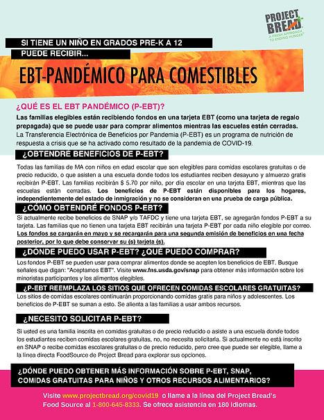 p-ebt-familias (ESP)-page-001.jpg